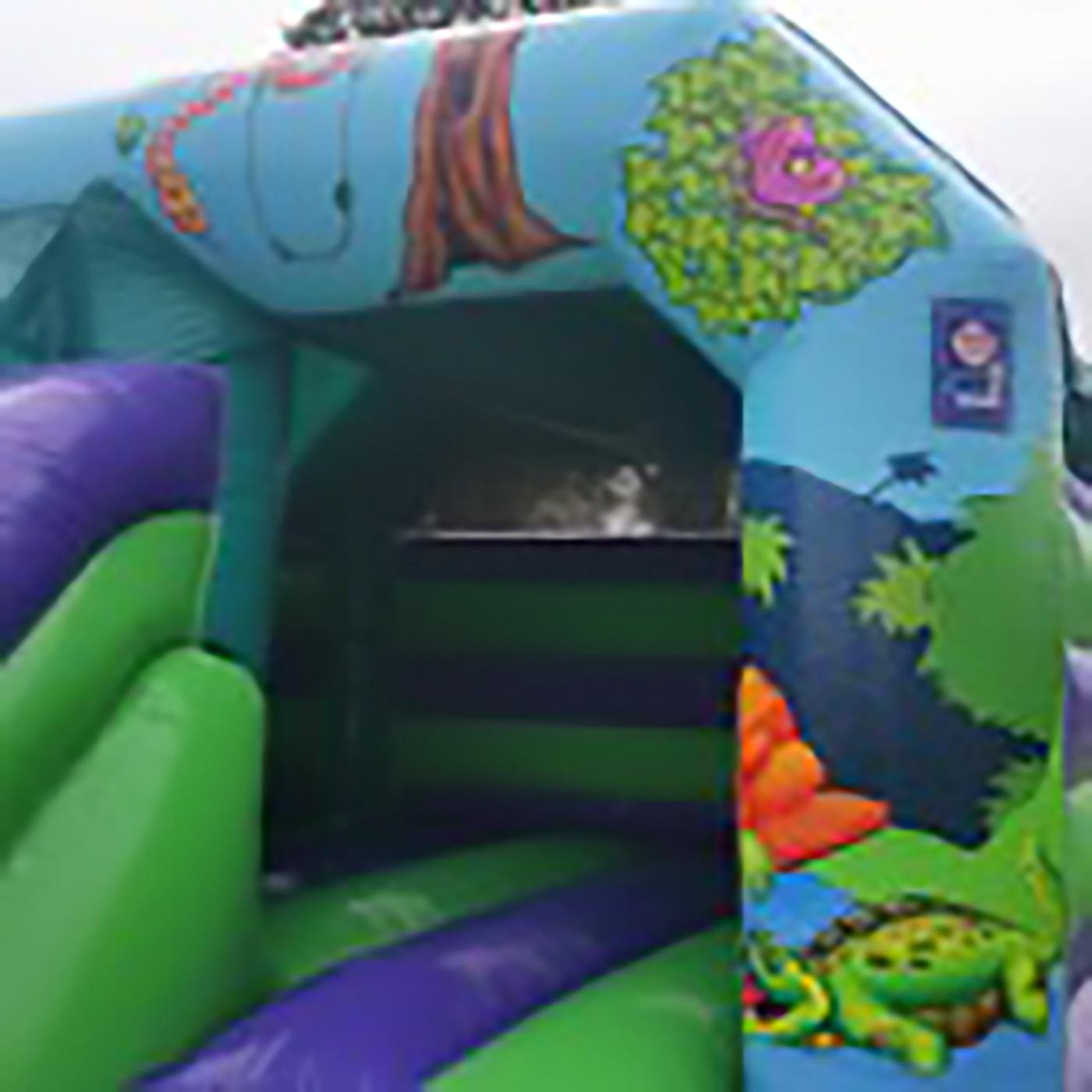 Bouncy Castles North Dublin example