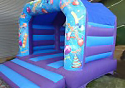 Party Theme Bouncy Castle
