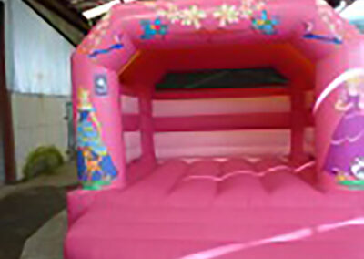 North Dublin Bouncy Castles Princess Bouncy Castle